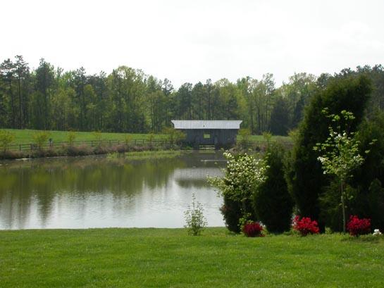 Hodgin Valley Farm